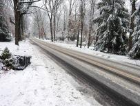 La-premiere-neige-1.jpg