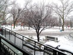 La-premiere-neige-2.jpg